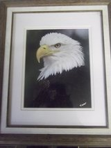 Eagle Portrait in Fort Carson, Colorado